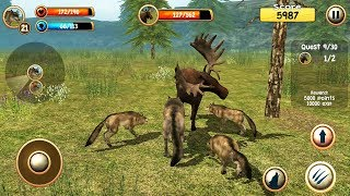 Wild Wolf Simulator 3D Android Gameplay #3