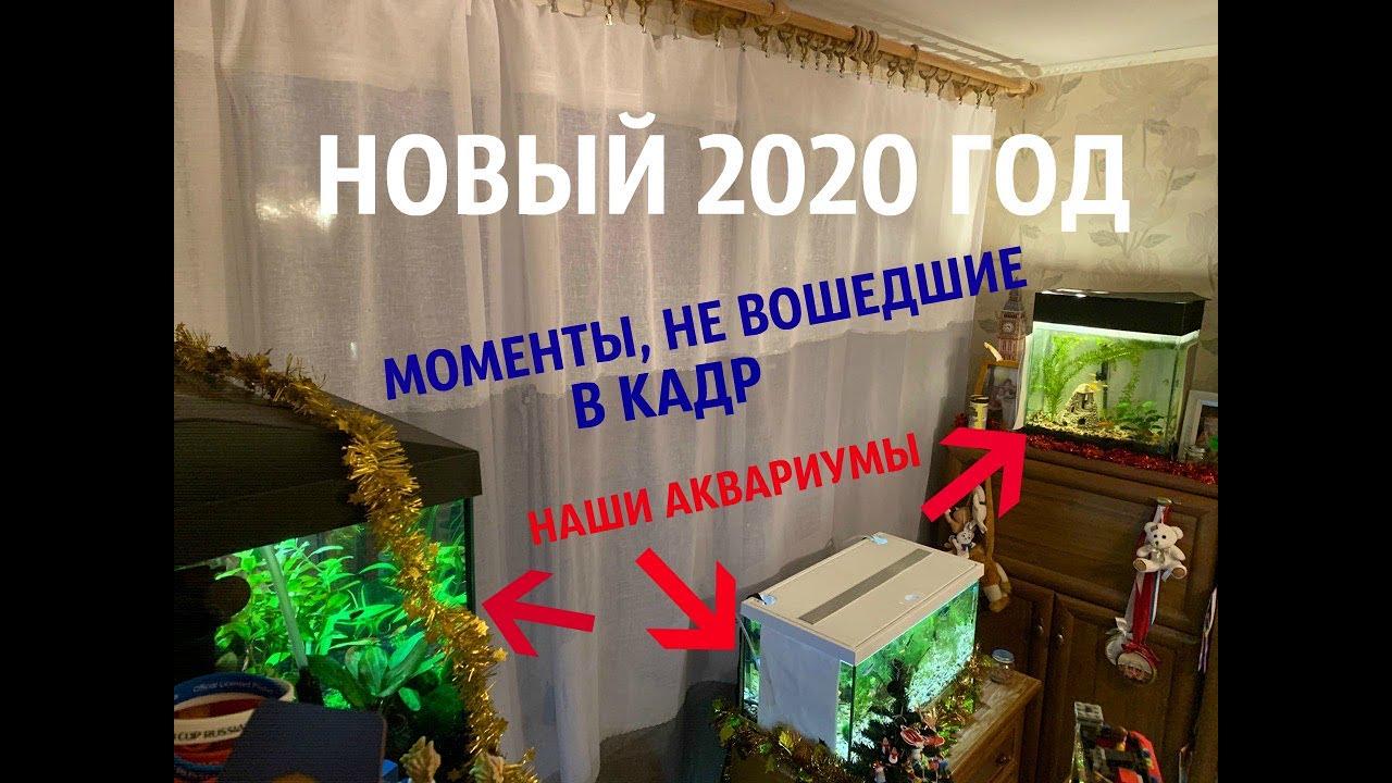 НОВЫЙ 2020 ГОД! I СМЕШНЫЕ МОМЕНТЫ 2019, КОТОРЫЕ НЕ ВОШЛИ В КАДР XD