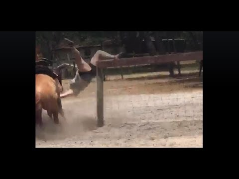 Woman Horse Trainer Gets Bucked Off - Gradated #1 In The Walmart School Of Horse Training
