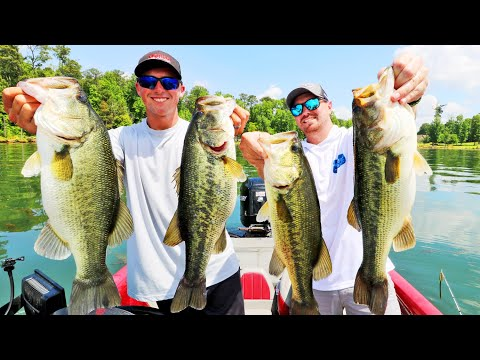 Catching MONSTER Bass On WACKY RIGS! (Lake Guntersville)