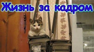 Семья Бровченко. Жизнь за кадром. Обычные будни. (часть 111)