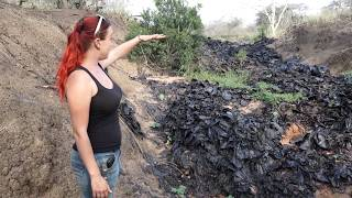 Environmental Cleanup with Wild Tomorrow Fund