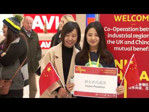 Northern Ireland China Summit 2017 - Belfast City Airport arrivals