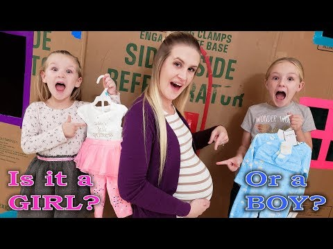 Our Mom is Pregnant for 24 Hours Challenge! Is the Baby a Boy or Girl?
