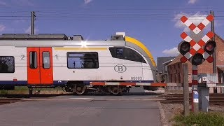 Spoorwegovergang Schellebelle/ Level Crossing/ Passage a Niveau/ Railroad-/ Bahnübergang