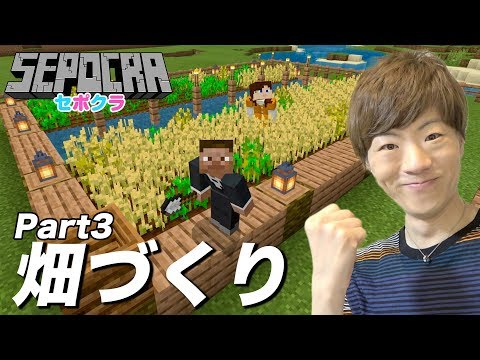 【セポクラ】Part3 - 食料が必要なので畑作ります!【セイキンゲームズ / マインクラフト】