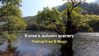Healing View & Music. 8 #힐…