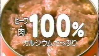 1987年 日清サラダ油 花王 ビオレ 石田えり 富士通ゼネラル ケントデリ...