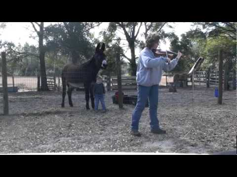Duet with Donkeyotee