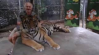 Thailand Healing   Retreats  Mark McBaron