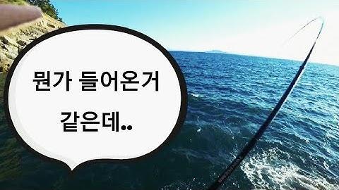 [빡꾼] 두미도 감성돔낚시!! ☆해질녁☆ 최고의 피크타임!! 즐거운 힐링낚시!! real fishing