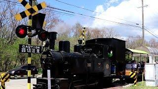 蒸気機関車・踏切・ミニ電車 | 野辺山SLランド