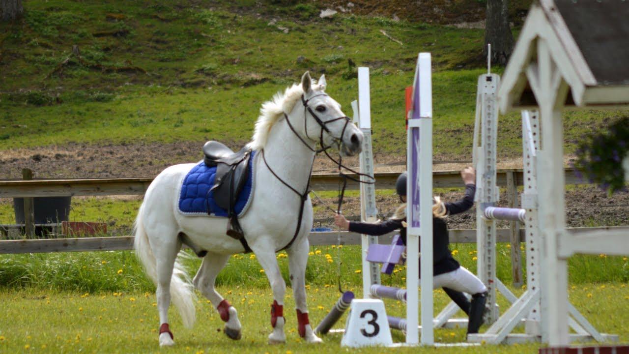 Download HORSE FAILS, FALLS, BUCKS AND MORE!! PT 2