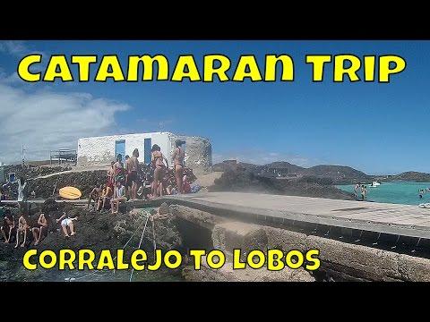 Catamaran Trip - What to do in Fuerteventura