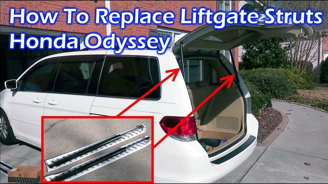 ARANA/® 2 Rear Tailgate Trunk Liftgate Struts Shocks Lift Support for Nissan Pathfinder 2005 2006 2007 2008 2009