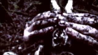 STILLE VOLK - La Forêt Gorgone (Official Video)   Holy Records