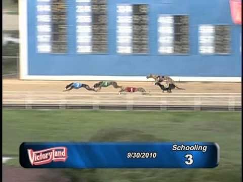 Victoryland 09/30/10 Schooling Race 3