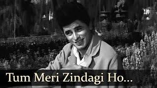 Tum Meri Zindagi Ho - Sanjay Khan - Mala Sinha - Dillagi - Bollywood Songs - Laxmikant Pyarelal