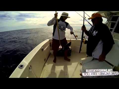 Cabo Fishing In Cabo