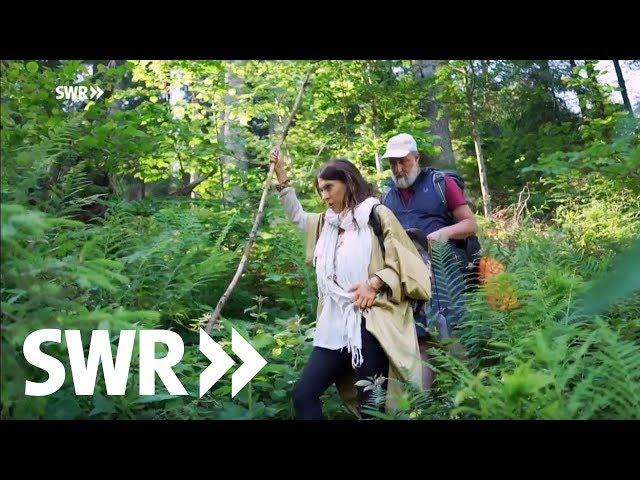 Mit Marc Marshall & Jana Pallaske im Hochschwarzwald | SWR Der mit dem Wald spricht