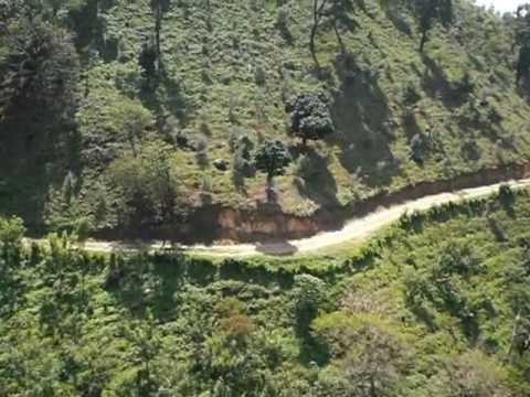 Zip Line at coffee plantation near Antigua Guatemala.mpg