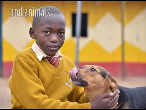 Donate a book on kindness to animals