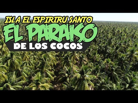 El Paraiso De Los Cocos Isla Espiritu Santo Puerto El Triunfo Usulutan El Salvador