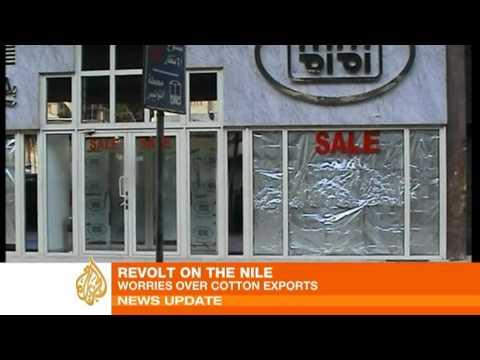 Egypt's revolt hits UK businesses