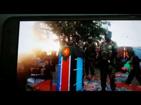 cab736edc زنوج السودان في غيهم يعمهون - علي عبد اللطيف صاحبهم الذي علمهم الغي!