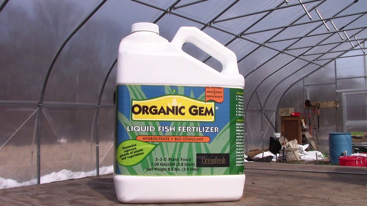 Organic Gem The Traditional Fish Fertilizer