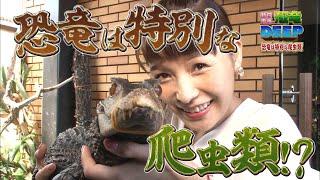 新田恵海の恐竜DEEP 恐竜は特別な爬虫類!?