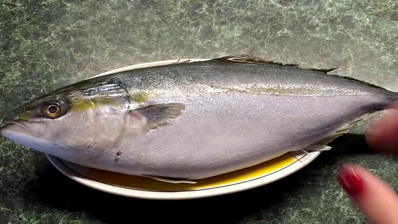 как приготовить рыбу тунец в духовке вкусно
