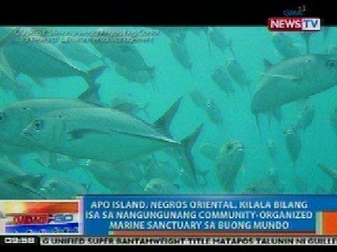 NTG: Apo Island, Negros Oriental, kilala bilang isa sa Marine Sanctuary sa buong mundo