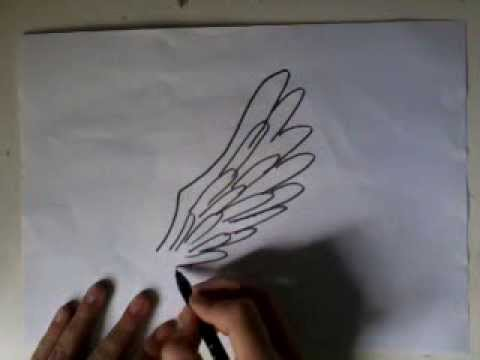 Apprendre a dessiner les ailes d 39 ange youtube - Modele d oiseaux a dessiner ...