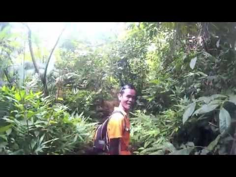 Backpacking Malaysia & Singapore 2015 part 5 Endau Romping