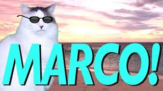 HAPPY BIRTHDAY MARCO! - EPIC CAT Happy Birthday Song