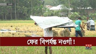 আম্পানের ধাক্কা কাটতে না কাটতেই ফের বিপর্যস্ত নওগাঁ! | Cyclone Amphan | Natural Disasters | Somoy TV