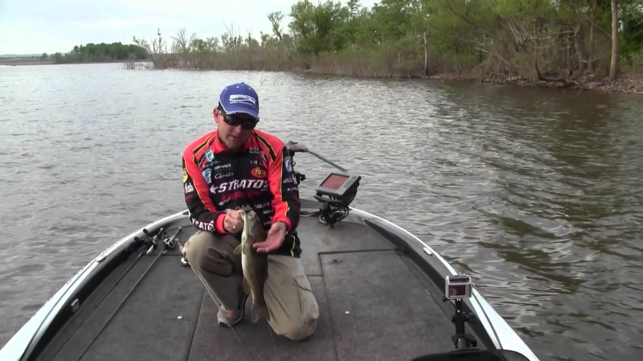 how to fish jerkbaits when bass spawn - youtube, Hard Baits
