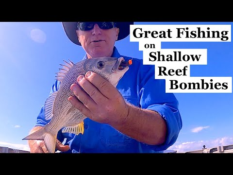 Great Fishing On SHALLOW REEF Bombies