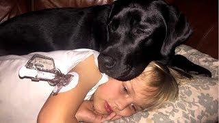 Esse Cão Alertou Sua Dona no Meio da Noite, Ao Chegar o Filho Ela Fica Apavorada!