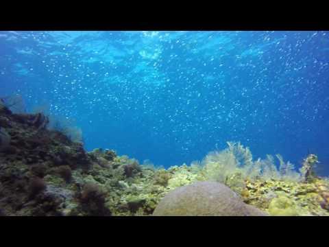 Tablas Island Reefs