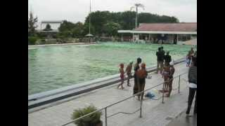 Download Video Gempa Aceh 11 April 2012 5_12.mp4 MP3 3GP MP4