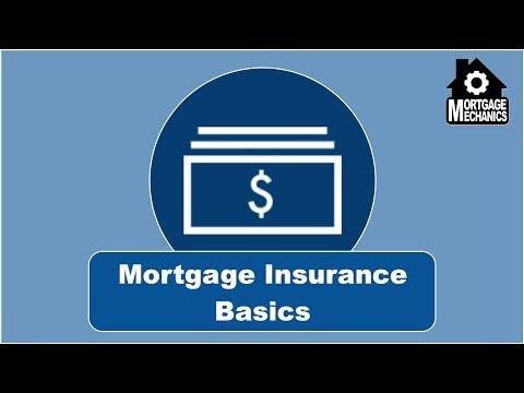 Mortgage Insurance Basics