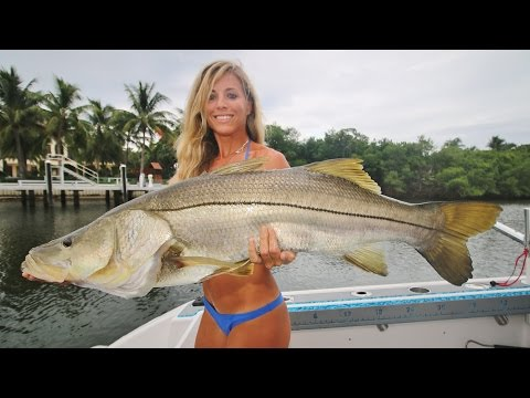 Inshore Saltwater Trolling for Big Snook Video