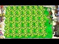 Plants Vs Zombies | The CRAZIEST Strategy I have EVER used!