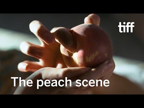 CALL ME BY YOUR NAME's Peach Scene: Book vs. Film | TIFF 2018