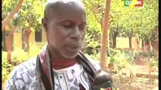 Organisation et structuration de la filière bétail-viande dans la région de Sikasso