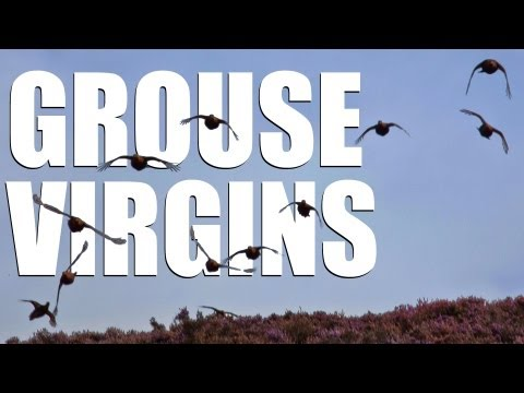 Fieldsports Britain - Grouse virgins (episode 196)
