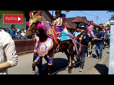 Begini cara Kuda menari,!!!!kuda renggong,sumedang 2018.