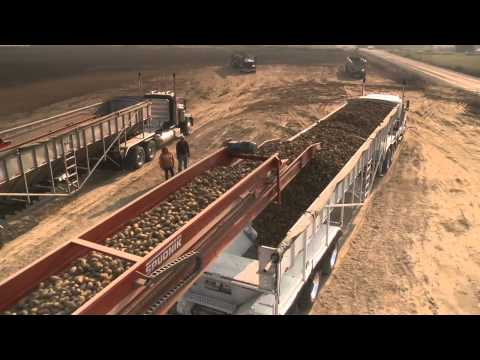 Potato Transloading Station